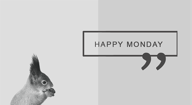 Happy_monday_wallpaper_eichhörnchen